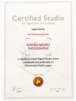 fine art certified studio